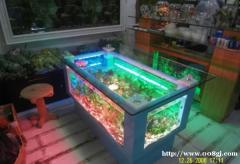 福州市鱼缸清洗维修定做鱼缸鱼缸搬家