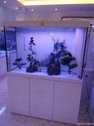 福州市鱼缸清洗安装护理维修定做搬移