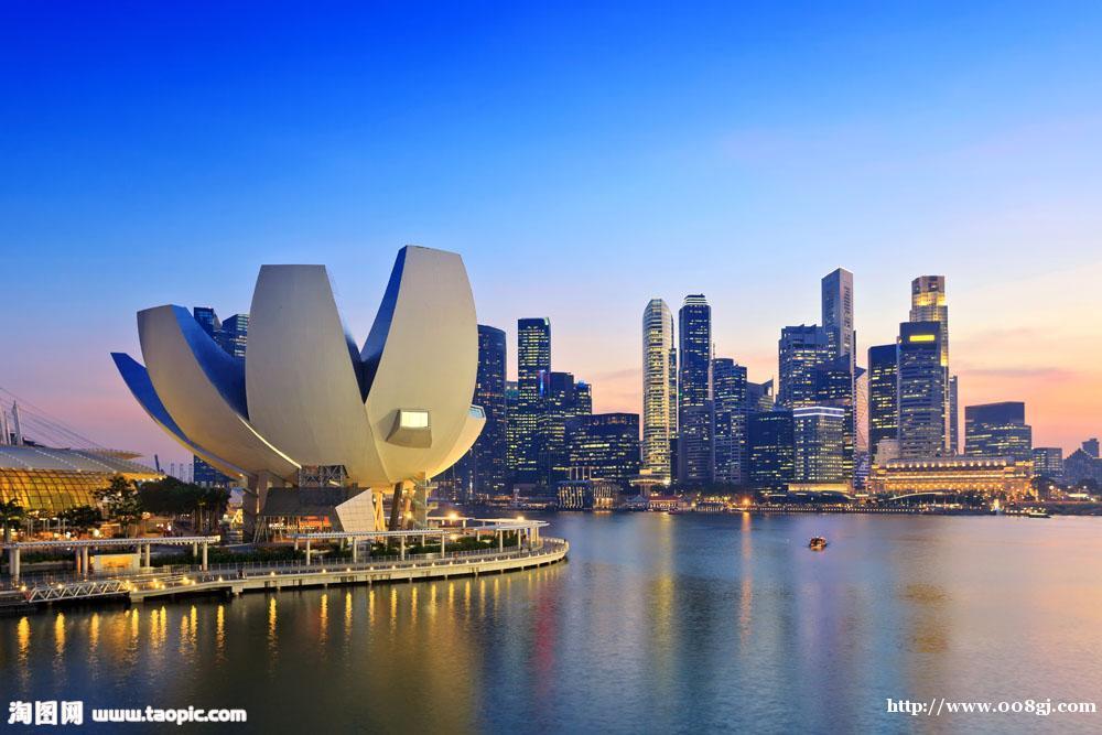 新加坡基金会注册公众非盈利公司区块链